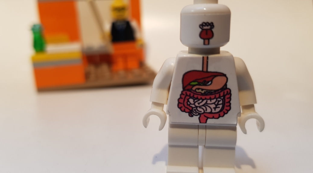 Human anatomy for firstaiders - digestive system