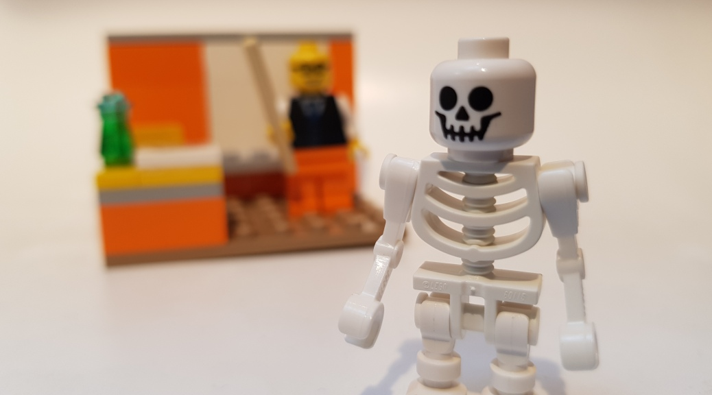 Human Anatomy - Skeleton